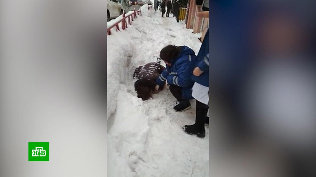 Подмосковье. Глыба льда упала с крыши на голову женщине - погибла на месте (2019)