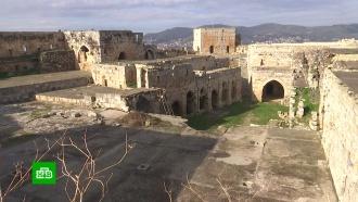 В древнем замке в Сирии обнаружили тайную комнату