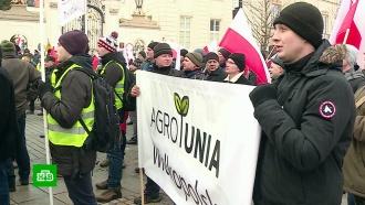 Почему польские фермеры хотят восстановить торговые отношения сРоссией