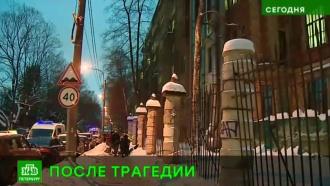 Врио губернатора Петербурга выразил соболезнования семье студента, погибшего от падения льда