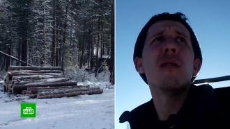 Иркутский блогер встал на защиту тайги от лесорубов