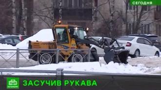 Новый глава петербургского Купчина даст бой гигантским сосулькам и метровым сугробам