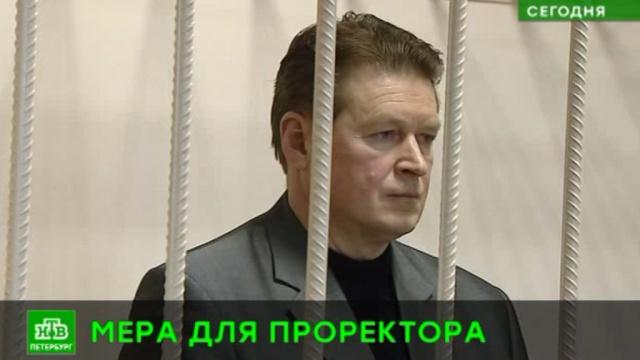 Проректора питерского вуза, где студента убило льдом, отправили под домашний арест.ЖКХ, Санкт-Петербург, вузы, несчастные случаи, смерть, снег, суды.НТВ.Ru: новости, видео, программы телеканала НТВ