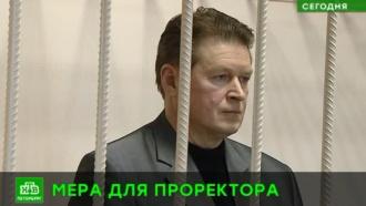Проректора питерского вуза, где студента убило льдом, отправили под домашний арест