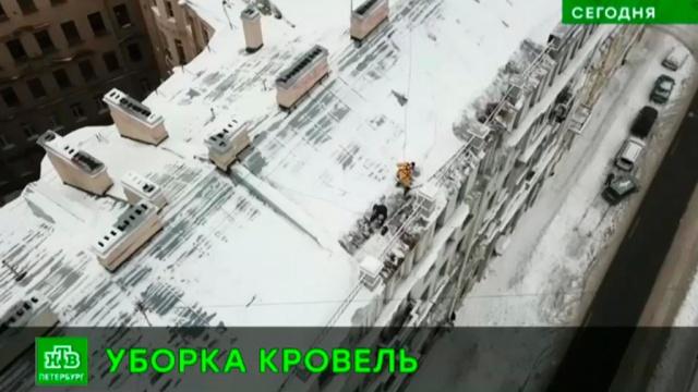 Питерские чиновники подсчитали количество опасных для горожан крыш.ЖКХ, Санкт-Петербург, лед, снег.НТВ.Ru: новости, видео, программы телеканала НТВ