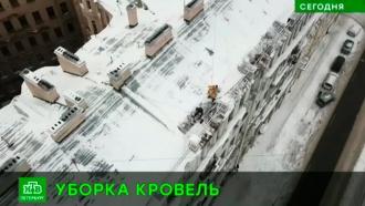 Питерские чиновники подсчитали количество опасных для горожан крыш