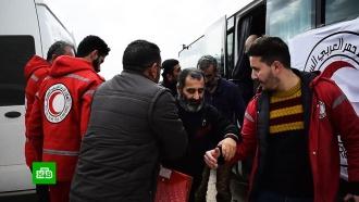 ВСирии 20пленников оппозиции обменяли на боевиков