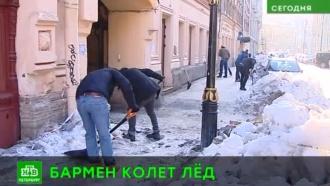 Бармены и рестораторы провели зимнюю уборку на улице Рубинштейна