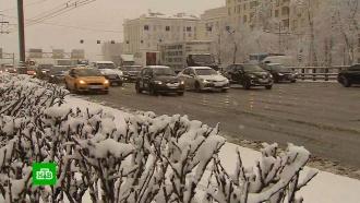 В Москве выпало рекордное количество мокрого снега