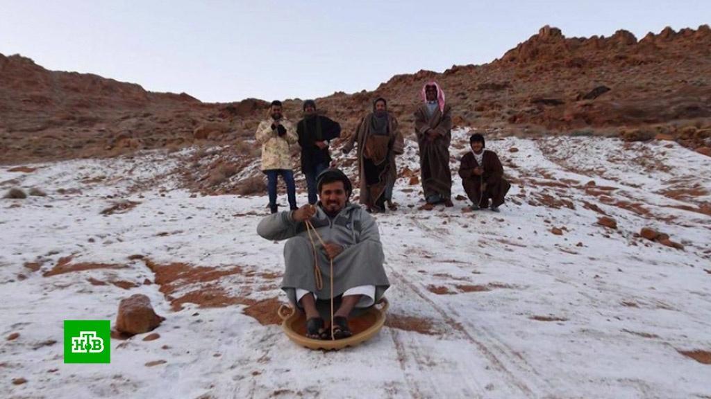 В Саудовской Аравии неожиданно выпал снег.Саудовская Аравия, снег.НТВ.Ru: новости, видео, программы телеканала НТВ