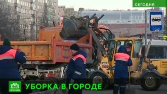 Горы снега и вмерзший мусор: названы главные проблемы зимней уборки в Петербурге