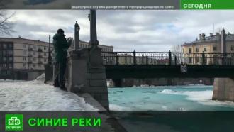 Петербургский Росприроднадзор накажет киношников за синий настил на реках и каналах
