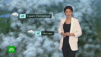Утренний прогноз погоды на 28 февраля