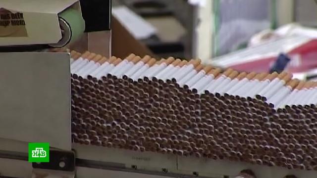 ВРоссии становится обязательной маркировка табачных изделий.контрафакт, табак, торговля.НТВ.Ru: новости, видео, программы телеканала НТВ