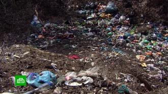 Мусорная реформа: тарифы на вывоз отходов вызывают вопросы у граждан