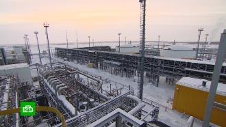 Запасов хватит до конца века: чем уникальна нефть Ванкорского кластера