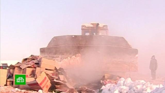 В России сожгли и раздавили 27 тысяч тонн санкционной еды.Россельхознадзор, еда, контрабанда, санкции.НТВ.Ru: новости, видео, программы телеканала НТВ
