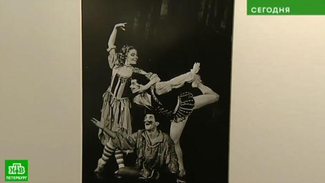 В Петербурге открывается выставка раритетных фотографий легенд балета.Санкт-Петербург, балет, выставки и музеи, фото.НТВ.Ru: новости, видео, программы телеканала НТВ