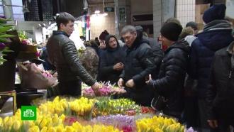 Кубанские биологи пошли в наступление на вырывающих краснокнижные цветы торговцев