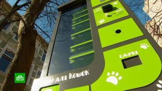ВЗеленоградске установили автомат продажи корма для бездомных животных