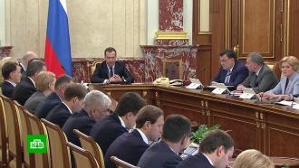 Медведев объяснил необходимость нового вида квот на вылов крабов