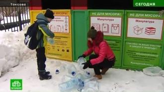 Школьники из Ленобласти увлеклись полезным экологическим квестом