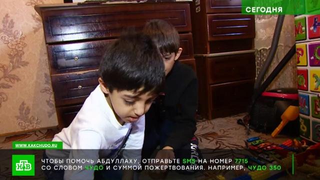Шестилетнему Абдуллаху из Ингушетии срочно нужны средства на спасительное лекарство.SOS, благотворительность, дети и подростки.НТВ.Ru: новости, видео, программы телеканала НТВ