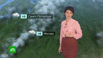 Утренний прогноз погоды на 19 марта