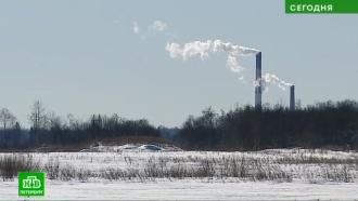 Бывшие земли РАН под Гатчиной хотят превратить вмусороперерабатывающий завод