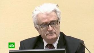 Суд вГааге вынес пожизненный приговор Караджичу