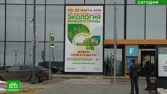 Эксперты думают, как наладить массовый раздельный сбор мусора в Петербурге