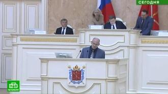 Петербургские депутаты иомбудсмен осудили увольнение журналиста «Коммерсанта»
