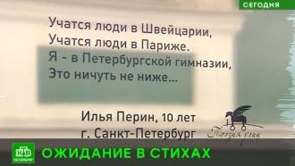 Петербургские остановки украсили современными стихами