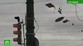 Штормовой ветер испытает Петербург на прочность