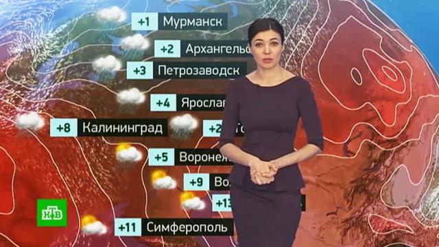Утренний прогноз погоды на 21марта.погода, прогноз погоды.НТВ.Ru: новости, видео, программы телеканала НТВ