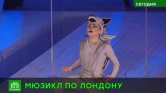 В Петербурге споют Джека Лондона