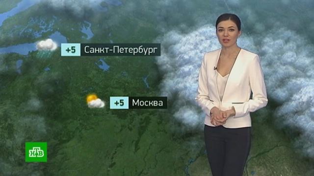 Утренний прогноз погоды на 25 марта.погода, прогноз погоды.НТВ.Ru: новости, видео, программы телеканала НТВ
