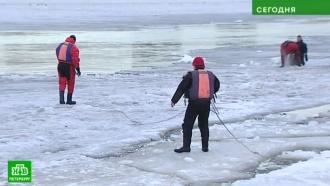 В Петербурге четвероклассник утонул, провалившись под лед