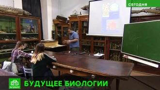 Преподаватели СПбГУ опасаются исчезновения кафедры на Биологическом факультете