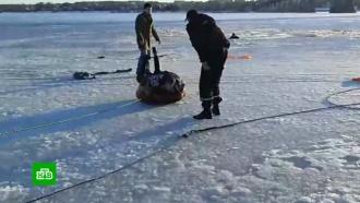 Житель Костромы спас провалившихся под лед подростков