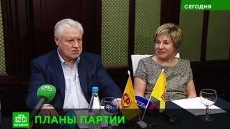 «Справедливая Россия» к маю определится с кандидатом в губернаторы Петербурга