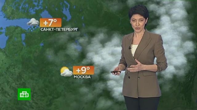 Прогноз погоды на 30марта.НТВ.Ru: новости, видео, программы телеканала НТВ
