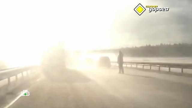 Тормозить идержать дистанцию: как себя вести ослепленному солнцем водителю.НТВ.Ru: новости, видео, программы телеканала НТВ