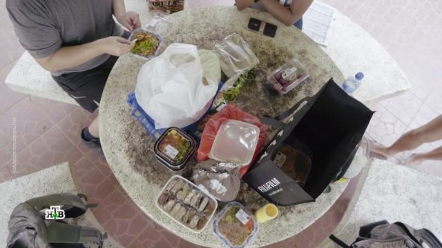 Бомжи вшоке: почему на Западе люди ищут продукты на помойках.еда, здоровье, магазины, продукты, торговля.НТВ.Ru: новости, видео, программы телеканала НТВ