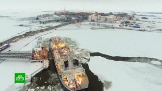 Две сверхзадачи: Сечин представил Путину арктические планы «Роснефти»