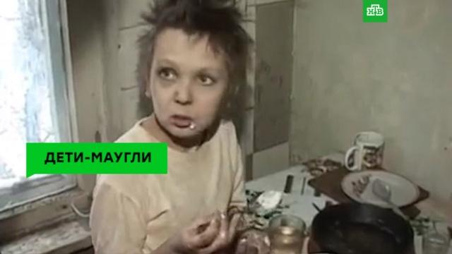 Дети-маугли вквартирах-помойках.НТВ.Ru: новости, видео, программы телеканала НТВ