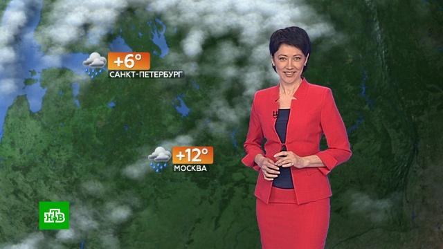 Прогноз погоды на 9 апреля.весна, погода, прогноз погоды.НТВ.Ru: новости, видео, программы телеканала НТВ