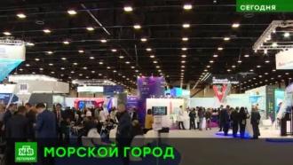 Помидоры вЗаполярье иэкология Якутии: технологии исоглашения Петербурга на Арктическом форуме