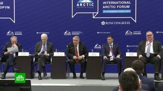 Участники Арктического форума вПетербурге обсуждают развитие Заполярья