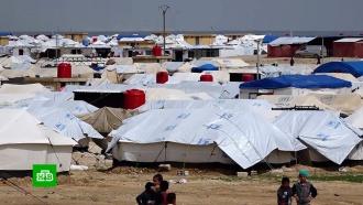 В сирийском лагере беженцев из-за нехватки еды и лекарств гибнут дети.Сирия, войны и вооруженные конфликты.НТВ.Ru: новости, видео, программы телеканала НТВ